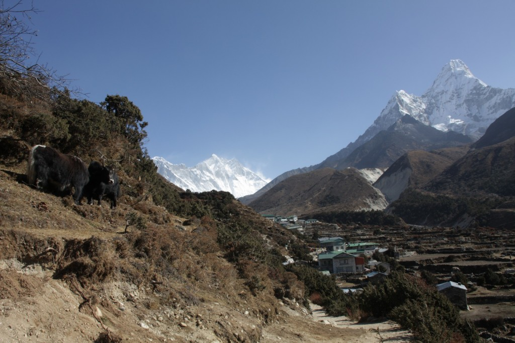The classic Khumbu view from just outside Penboche
